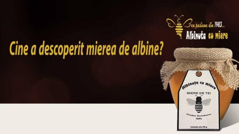 Mierea de albine –  Din epoca de piatra in supermarket